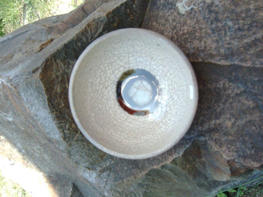 4MP859 Digital Camera